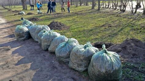 В Воронежской области в ходе месячника благоустройства убрали более 13 тыс га территорий