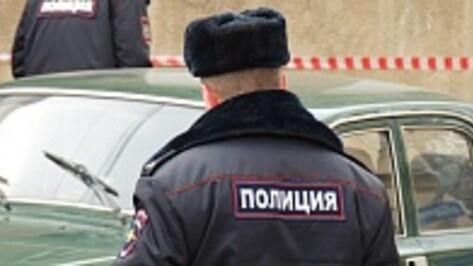 Полицейские ищут водителя, сбившего насмерть пешехода под Воронежем