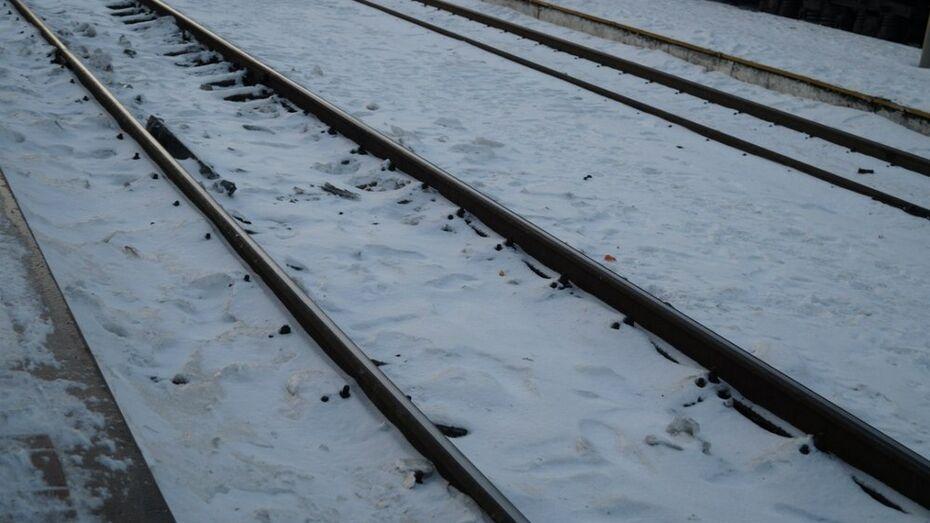 В Каменском районе под колесами поезда погибла 16-летняя девушка