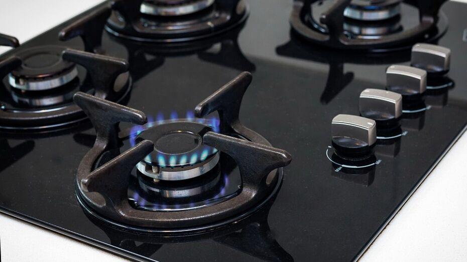 Губернатор раскритиковал работу властей Новоусманского района из-за долгов жителей за газ