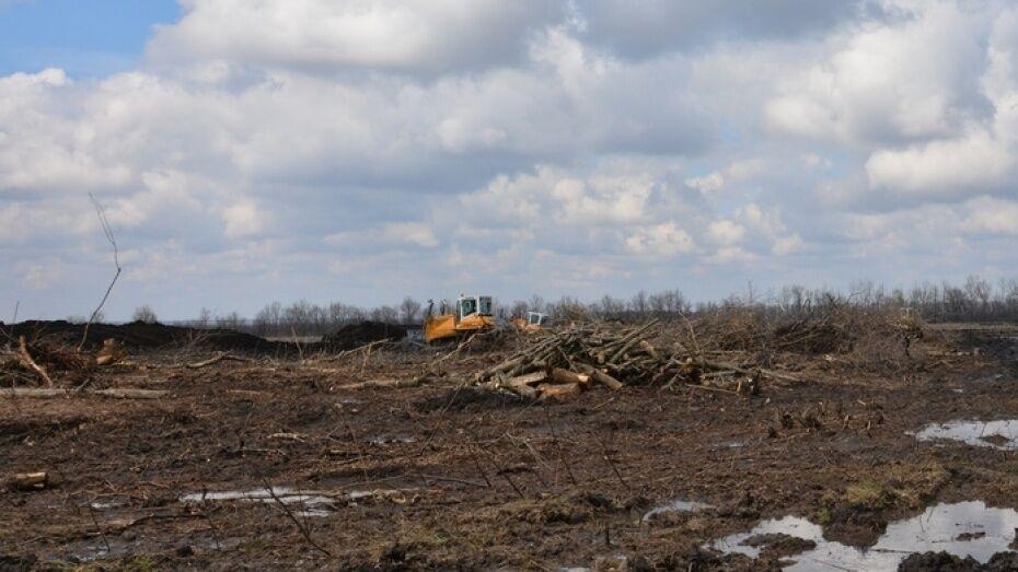 В Воронеже неизвестный незаконно присвоил участок земли на улице Воробьевской