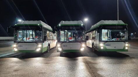 Колонна новых низкопольных автобусов прибыла в Воронеж