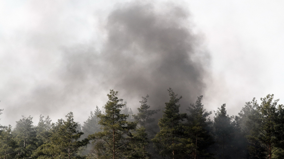 Низкую пожароопасность отметили только в 1 районе Воронежской области