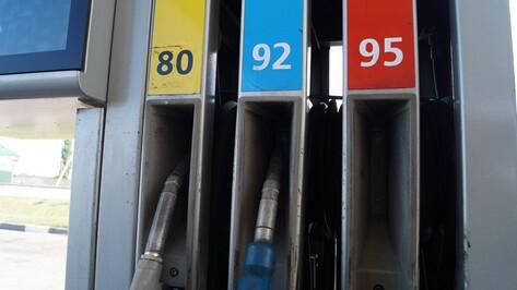 Воронеж поставил российский рекорд падения цен на бензин