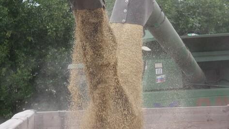 Ольховатские аграрии завершили уборку ранних зерновых культур