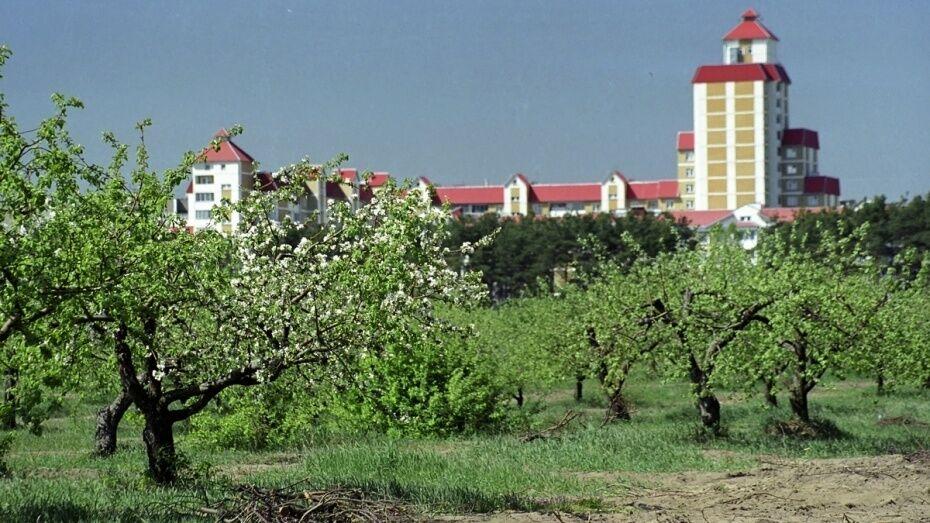 В Воронеже прокуратура подала иск о возврате еще одного участка яблоневого сада