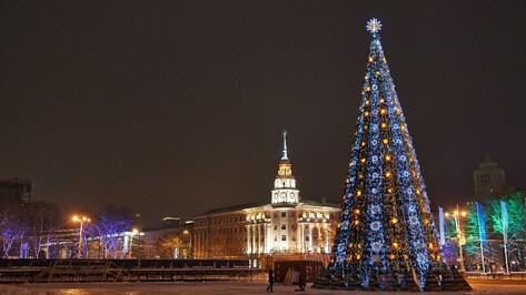Гид РИА «Воронеж»: чем заняться в городе на выходных 26 и 27 декабря