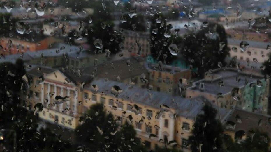 Новая рабочая неделя в Воронеже будет жаркой и дождливой