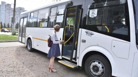 Мэр Воронежа: «Нельзя сразу перевернуть всю систему общественного транспорта»