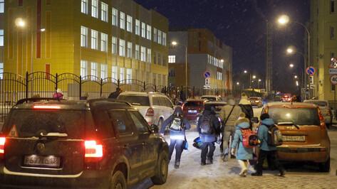 В Воронеже полицейские будут дежурить у переходов возле школ