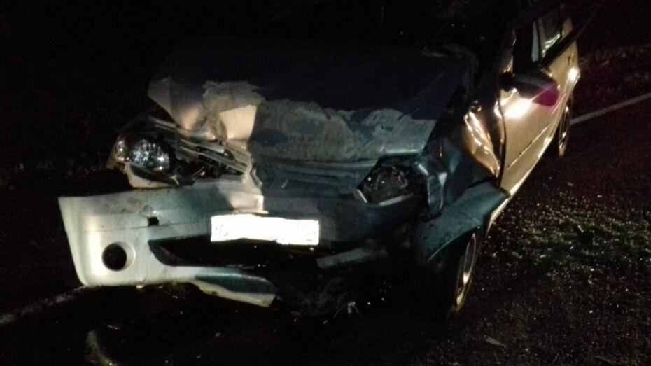 В ДТП на трассе в Воронежской области погибла 16-летняя девочка