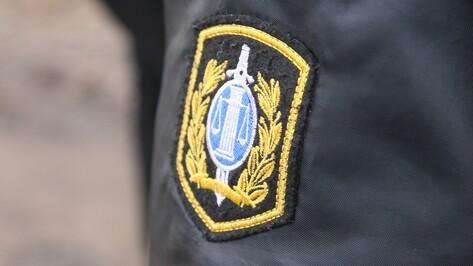В Воронеже на взятке в 100 тысяч рублей попалась судебный пристав