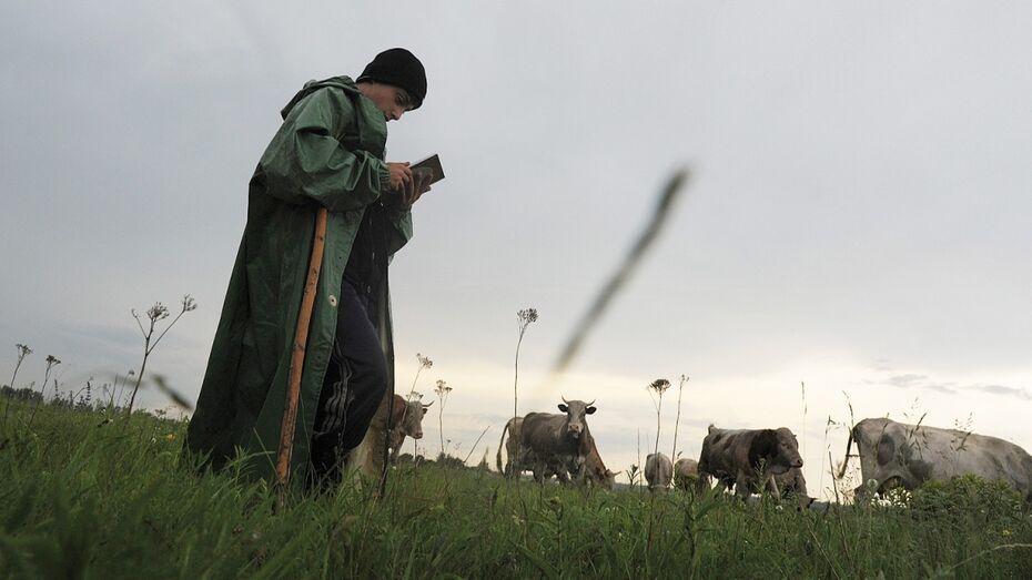 Заброшенные хутора: как пустеют воронежские деревни. Солонцов