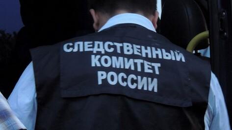 Жительница Воронежской области забила мать-пенсионерку тростью
