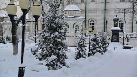 Для завершения работ в Благовещенском соборе Воронежа понадобится помощь спонсоров