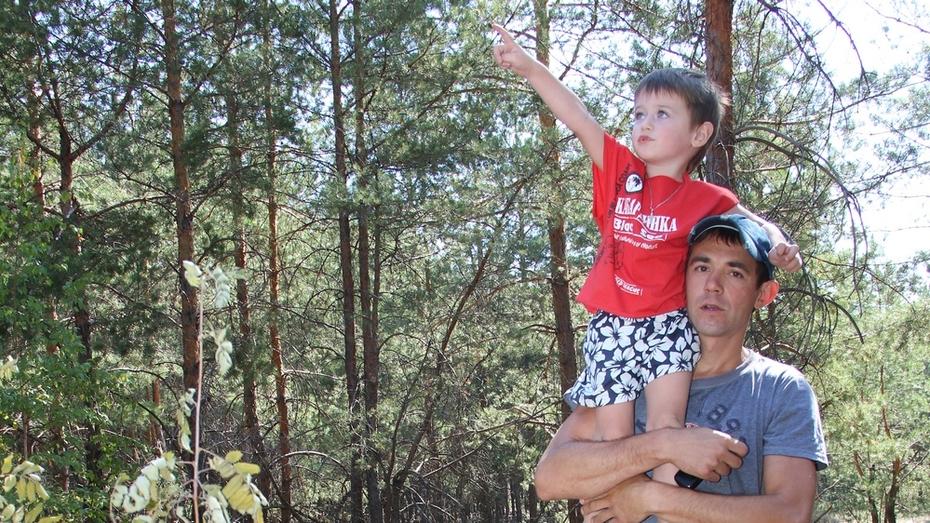 Трехлетний мальчик из Лисок предотвратил лесной пожар