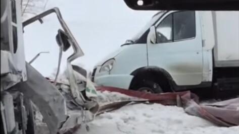 Последствия ДТП с 15 машинами под Воронежем попали на видео