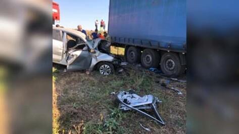 Уральского дальнобойщика осудили за смертельное ДТП в Воронежской области