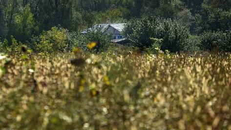 В Воронежской области стартовало голосование за самое красивое село
