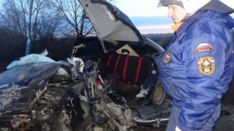 В Бобровском районе на трассе «Дон» в ДТП попали 12 машин