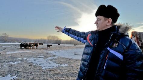 Анатолий Спиваков и сельское хозяйство Воронежской области. Как это было