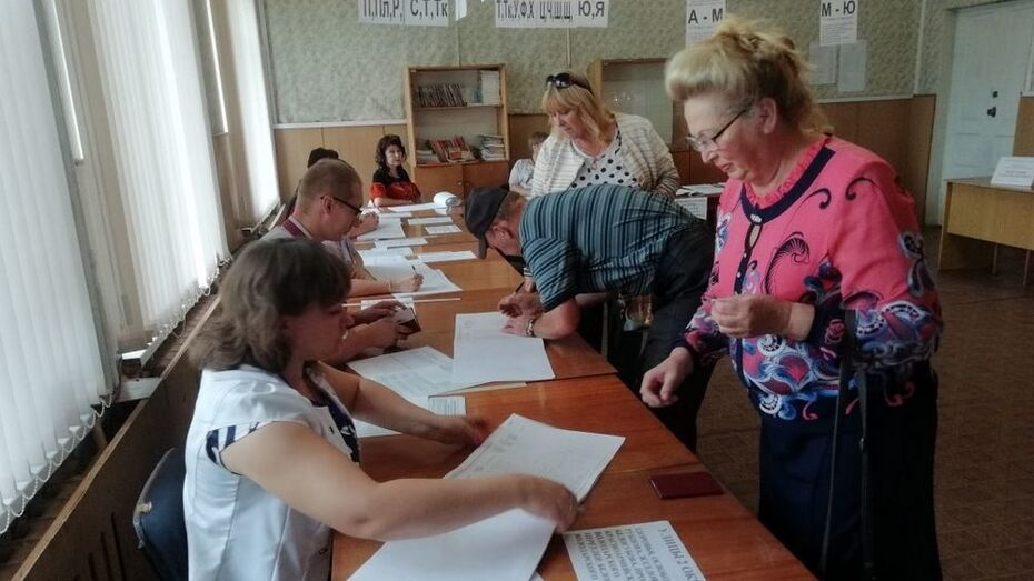 В Богучарском районе в 4 сельских поселениях выбрали депутатов