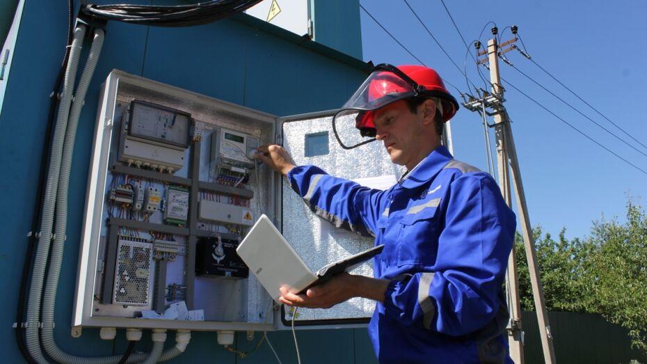 «Россети Центр» в Воронежской области пресекли более 700 фактов хищения электричества