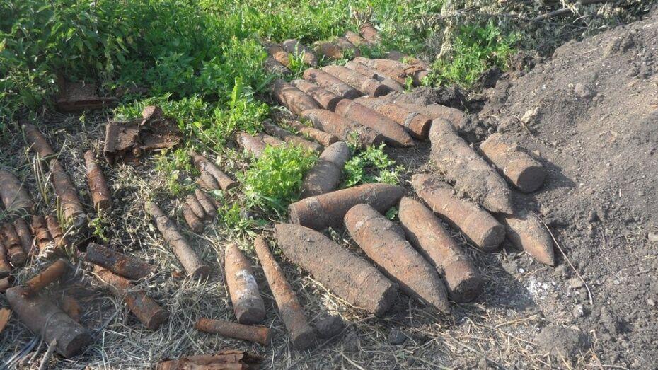 В Рамонском районе уничтожили 189 боеприпасов времен Великой Отечественной войны