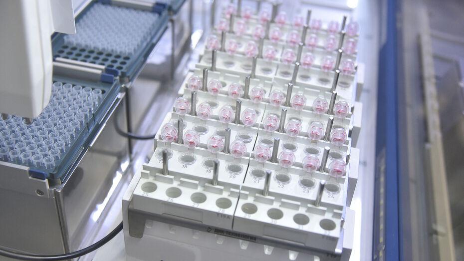 С начала пандемии диагноз «коронавирус» поставили 78 тыс жителей Воронежской области