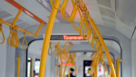 Трамвай вместо метро? Институт Генплана Москвы выдал свое видение будущего Воронежа