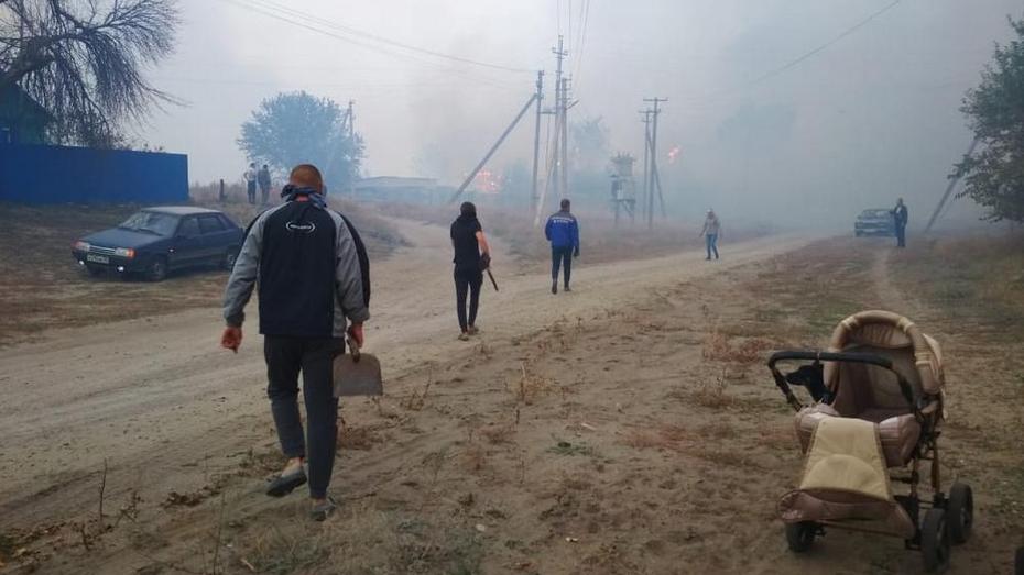 Часть села в Воронежской области сгорела из-за упавшего на ЛЭП дерева
