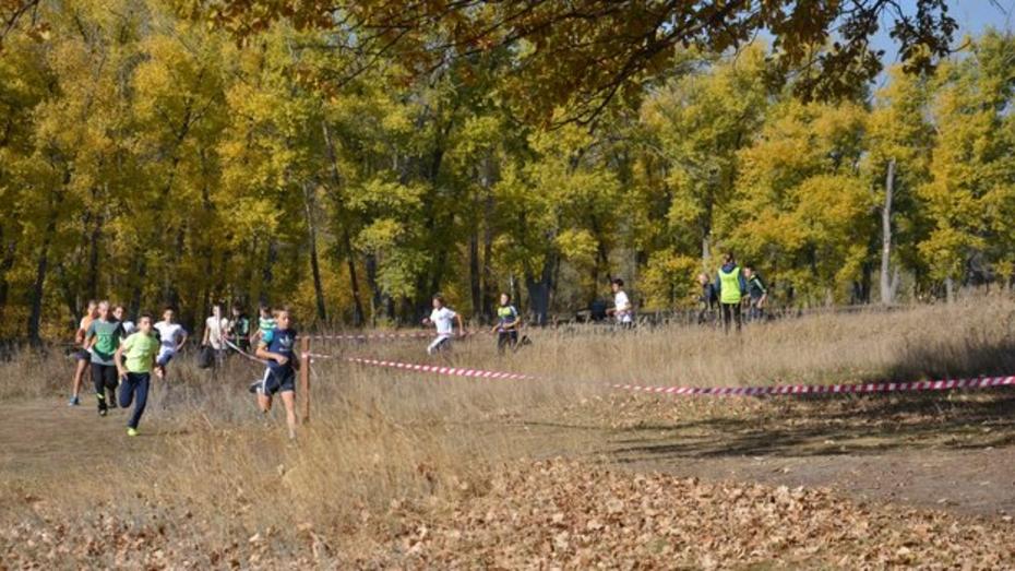 В осеннем легкоатлетическом кроссе в Поворинском районе приняли участие 178 бегунов
