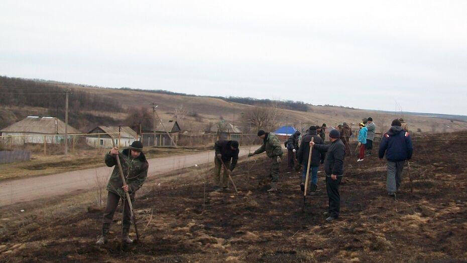 В Богучарском районе начали сажать «Лес Победы»