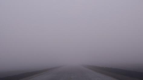 Непогода и авария закрыли воронежцам путь в Москву