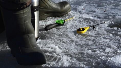Рыбаки потерялись на Воронежском водохранилище во время метели 17 марта