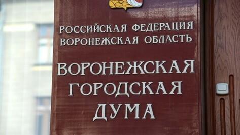 Вопрос о проведении конкурса по выборам мэра Воронежа решится 17 января