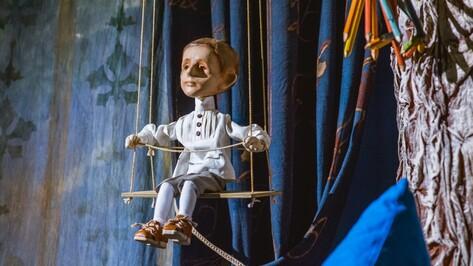 Воронежский театр кукол закрыл сезон премьерой мультспектакля по стихам Мандельштама