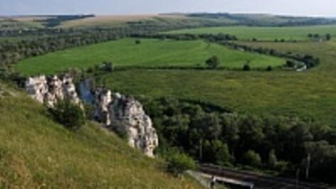 Воронежцам предлагают сфотографировать памятники археологии
