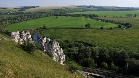 Воронежскую область в 2015 году посетили почти 400 тыс туристов