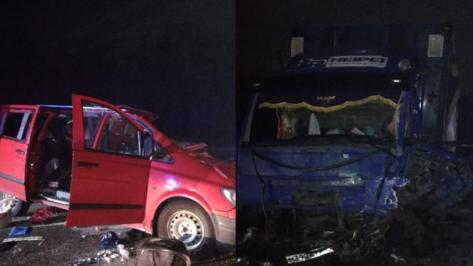 Число жертв ДТП с микроавтобусом и фурой в Воронежской области выросло до 4