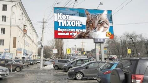 В Воронеже за кресло мэра будет бороться кот