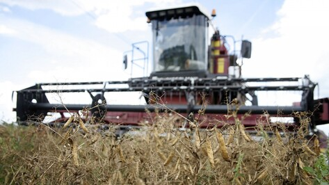 Правительство РФ выделило 582 млн рублей на сельское хозяйство Воронежской области