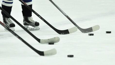 Хоккейная «Россошь» уступила «Белгороду»