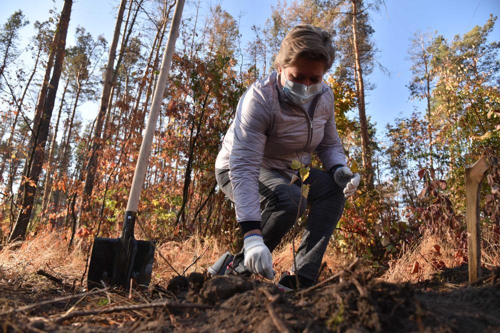 Наталья Ветер, главный эколог
