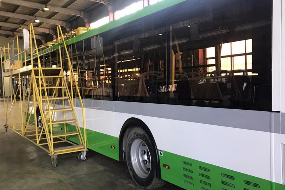 Новые автобусы выйдут на 3 маршрута в Воронеже