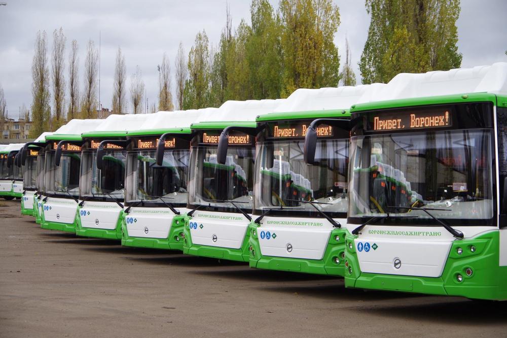Новый автобусы Воронежпассажиртранса