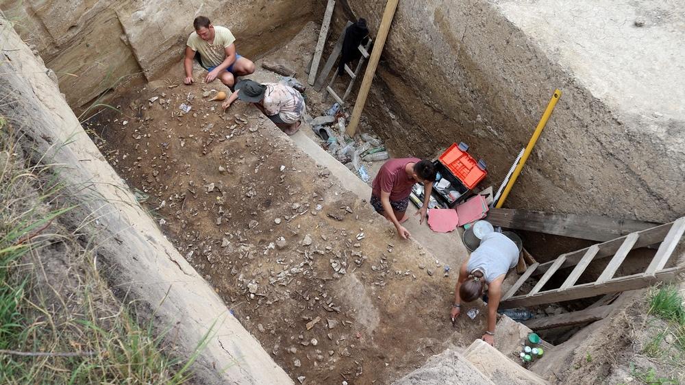 Во время раскопок.
