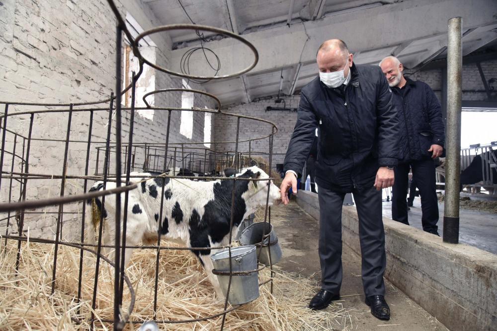 Виталий Шабалатов на ферме