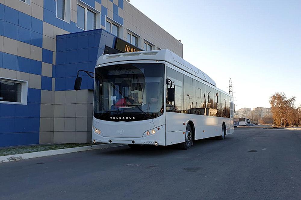 Автобусы скоро выйдут на воронежские улицы