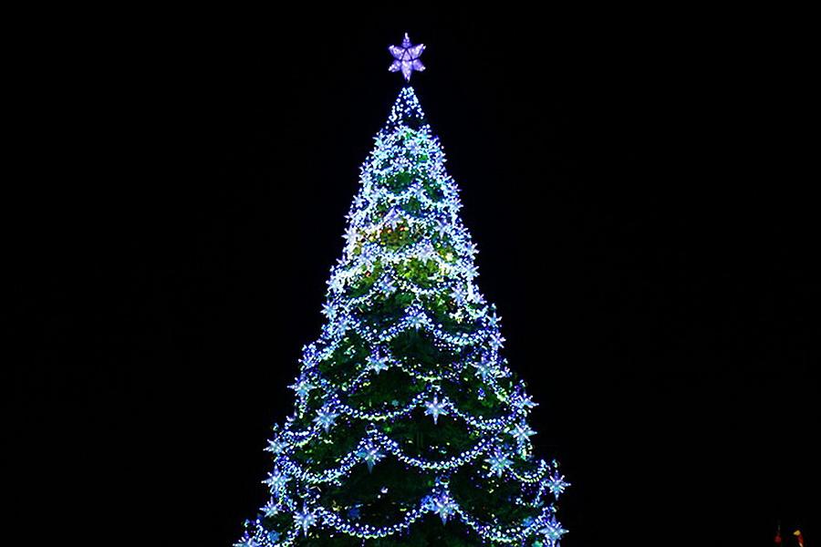 Верхушка воронежской елки на площади Ленина
